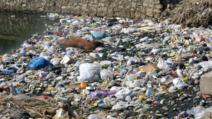 Z cyklu znajdź na obrazku: tysiące śmieci i jeden zdechły koń